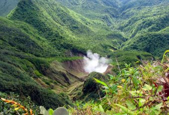 Hola Dominica - full day domestic tour