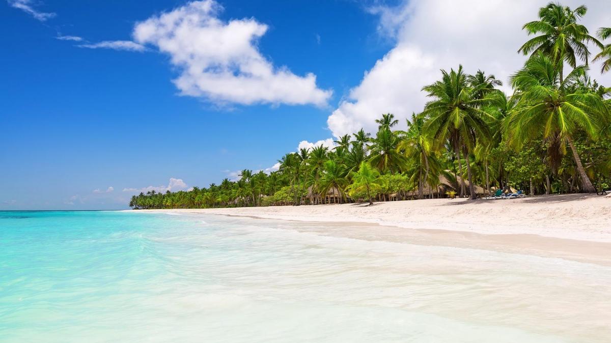 Private Saona Island and Altos de Chavon koral town
